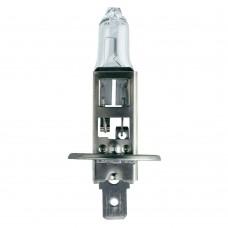 H1 100W bulb